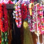 """Hanging Leis"" by elayne"