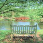 """Bench at Meadowlark Gardens, Vienna VA"" by RogerPhotos"