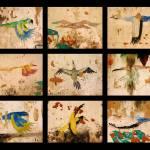 """""""Brazilian Birds"""" by WillAustin"""