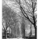 """Winter Avenue"" by AndrewCowton"