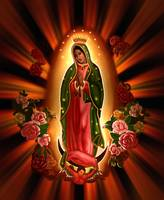 Virgin of the Roses