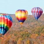 """Three Balloons"" by rogardphoto"