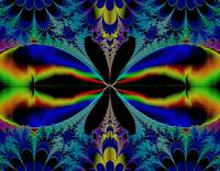 Fractal Butterfly? Dragonfly? Bright Colors 08