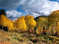 Colors of Mountain Autumn II