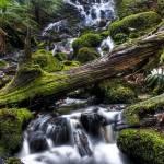 """Cora Lynn Falls"" by avanti_35"