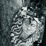 """""""Faces in the trees"""" by gypsydave"""