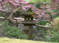 Peaceful Dream~ Japanese Garden