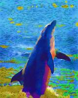 Dolphin high resolution watercolour
