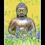 """garden buddha"" by dianeward"