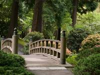Over the Bridge ~ Japanese Garden