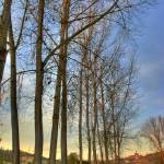 """Monferrato HDR vertical panorama"" by xamad"