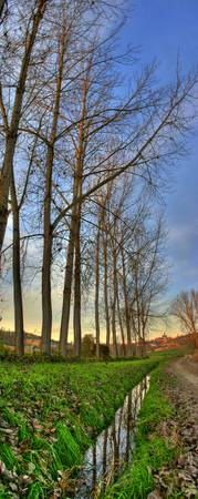 Monferrato HDR vertical panorama