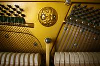 Rogers Upright