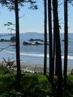 Ruby Beach looking south