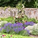 """Adare Garden"" by MeggieB"