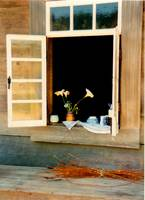 Country-Window-41x56--