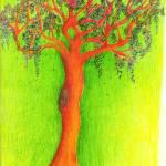 """""""Willow teen"""" by ElizabethSullivan"""