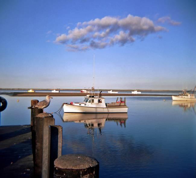 "Boat Sales Cape Cod: Stunning ""Massachusetts"" Artwork For Sale On Fine Art Prints"