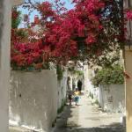 """""""Crete"""" by knutb"""