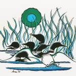 """A Family Of Loons"" by firstnationsartstore"