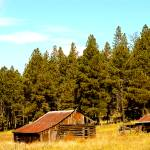 """""""Old Barns in the Meadow"""" by rayjacque"""