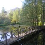 """Meadow 2"" by reflectionsofmysoul"