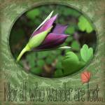 """Wander"" by dornickdesigns"