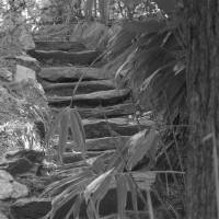 Stone Staircase Art Prints & Posters by Rick Teare