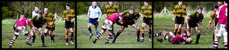 rugby panoramic