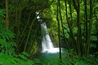 Waterfall, Azores islands