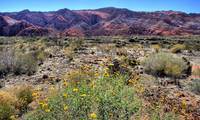 Snow Canyon II