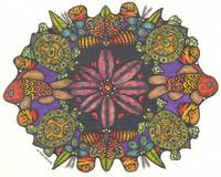 TurtleKaleidoscope65