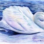 """Serenity"" by sumariel"