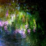 """Giverny spirit XXVII"" by Woodsman"