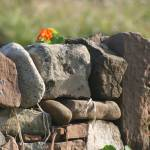 """Drystone wall"" by Mouldy"