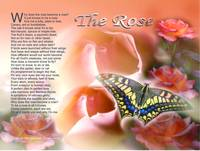 the_rose copy