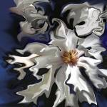 """Star Magnolia"" by MannellGallery"
