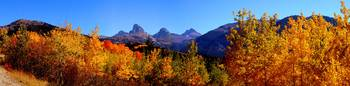 Teton Canyon in Autumn