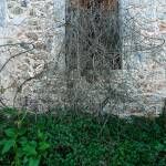"""""""Overgrown Window"""" by LesMeyers"""