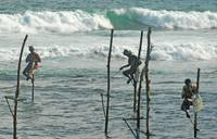 Fishermen on stilts, Sri Lanka