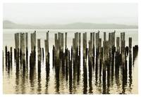pilings on the columbia