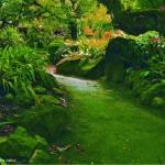 """""""Faerie Trail"""" by LornaKailiuli"""