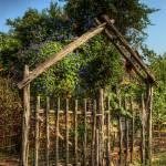 """""""Cedar Gate"""" by dawilson"""