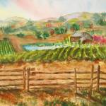 """Napa Vineyards"" by MannellGallery"
