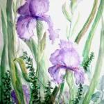 """Lavender Iris I"" by MannellGallery"