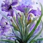 """Purple Iris I"" by MannellGallery"
