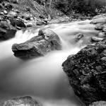"""Olallie State Park 1"" by steveydphoto"