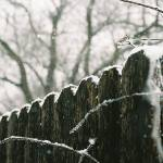 """Snowonfence"" by JustinHogue"