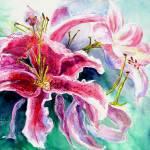 """Stargazer Lily"" by MannellGallery"