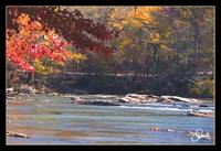 Fall on the Chattahochee